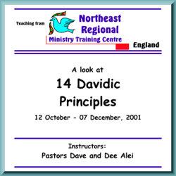 14 Davidic Principles